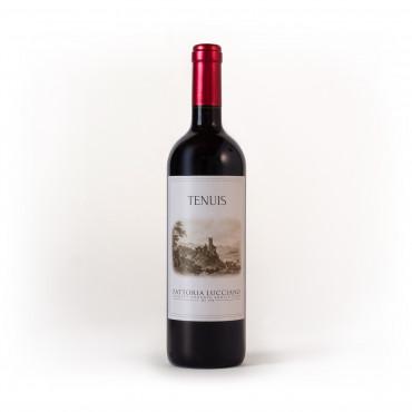 vino biologico tenuis fattoria lucciano